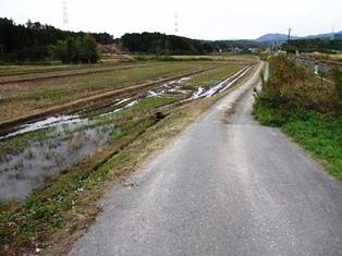 f:id:fuwakudejokyo:20171119210826j:image