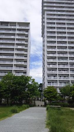 f:id:fuwakudejokyo:20190522224118j:plain