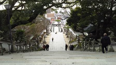 f:id:fuwakudejokyo:20200203205619j:plain