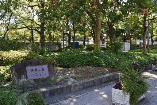 f:id:fuwakudejokyo:20200915215751j:plain
