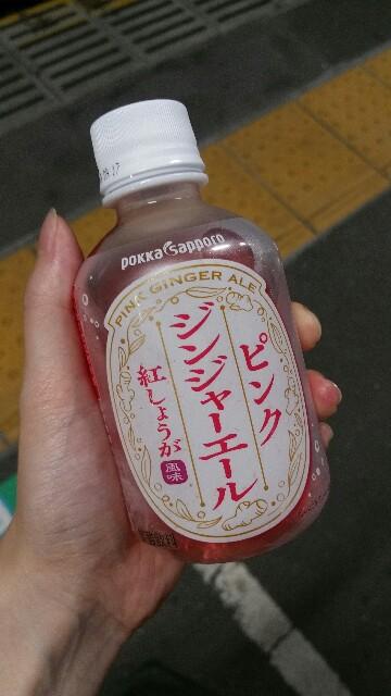 f:id:fuwamori1ppai:20180601215534j:image