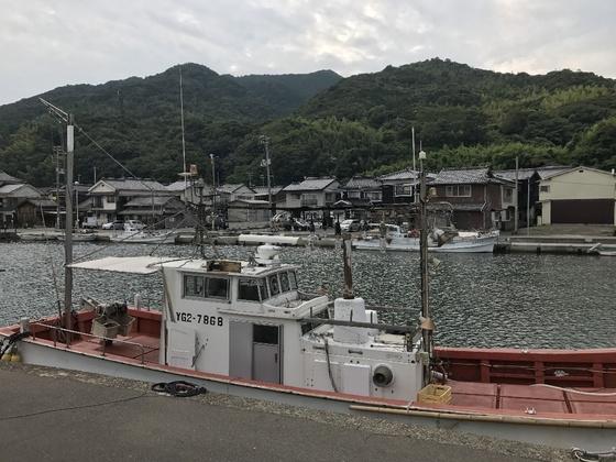 f:id:fuwari-x:20190405130841j:plain