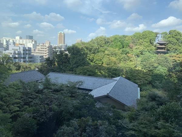 f:id:fuwari-x:20201006100211j:plain