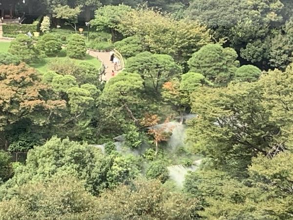 f:id:fuwari-x:20201006101317j:plain