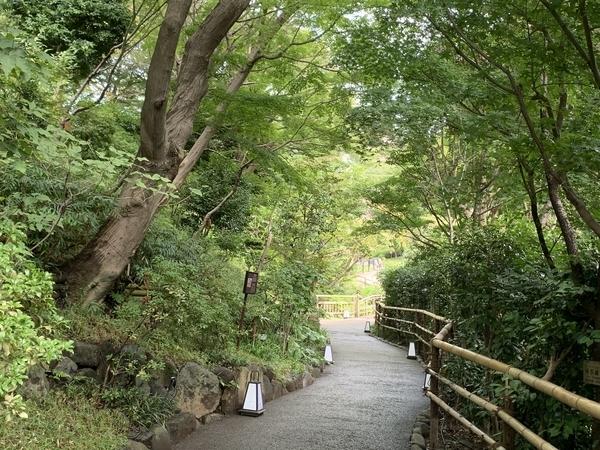 f:id:fuwari-x:20201008095935j:plain