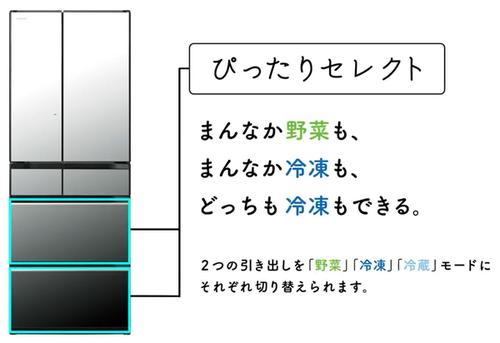 f:id:fuwari-x:20210525142752p:plain