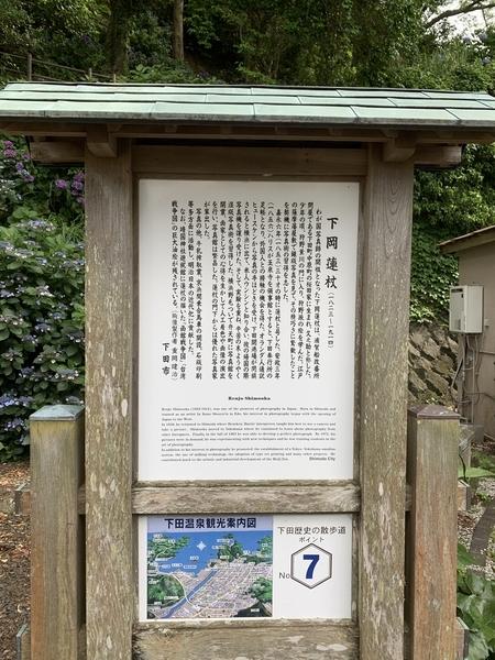 f:id:fuwari-x:20210623151354j:plain