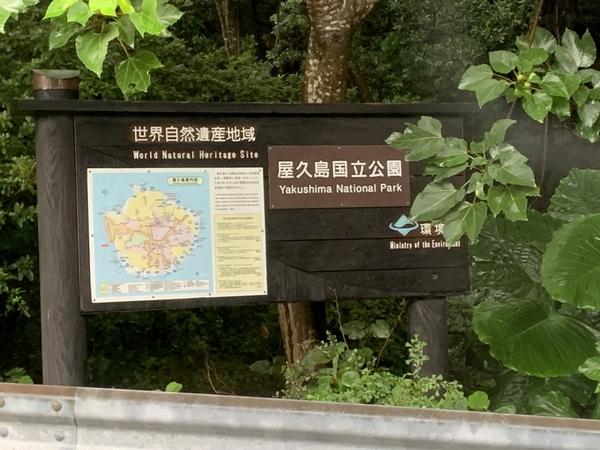 f:id:fuwari-x:20210906135849j:plain