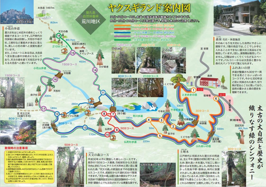 f:id:fuwari-x:20210915101159p:plain