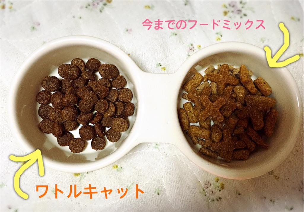 f:id:fuwari010:20170219230710j:image