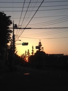 f:id:fuwarirurara:20170430181256j:plain