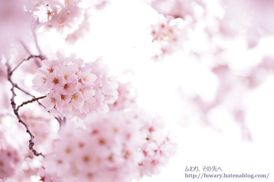f:id:fuwary:20170416002419j:plain