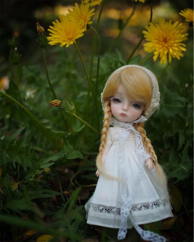 f:id:fuyu_noko:20170427083249j:image