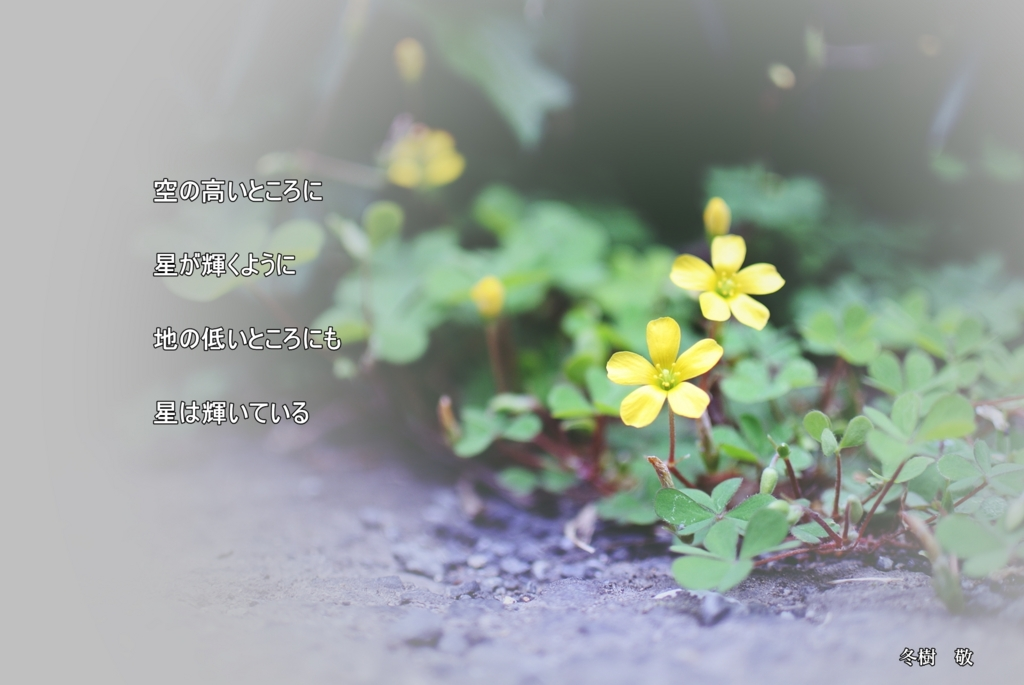 f:id:fuyuki44:20170423200339j:plain