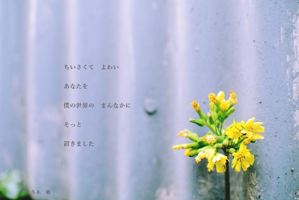 f:id:fuyuki44:20170516210146j:plain