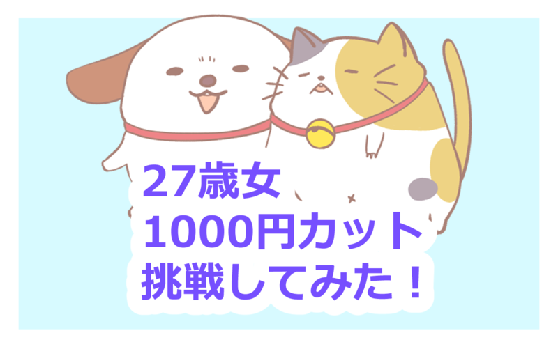 f:id:fuyuko1029:20200728231623p:plain