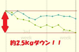 f:id:fuyushima:20180606080637p:plain