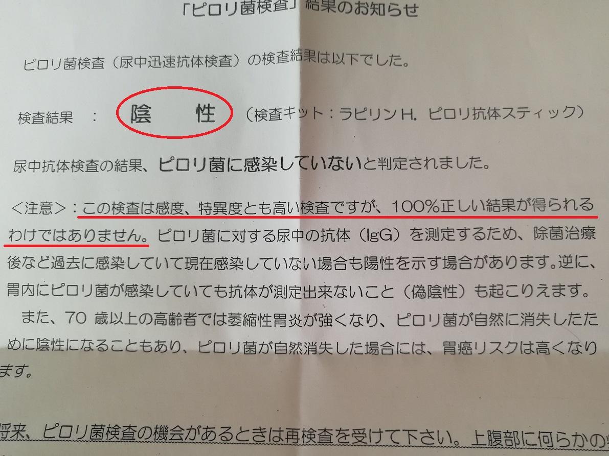 f:id:fuyushima:20190512210424j:plain