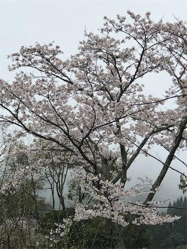 f:id:fuyuyuzuiro:20170408131453j:image