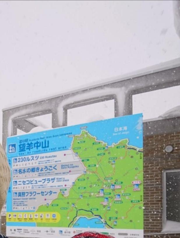 f:id:fuzuki-satuki:20190627102213j:plain