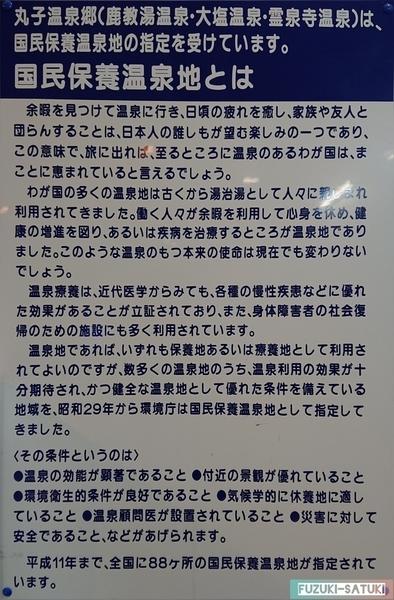 f:id:fuzuki-satuki:20200601225921j:plain