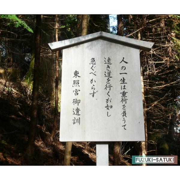 f:id:fuzuki-satuki:20200601234313j:plain