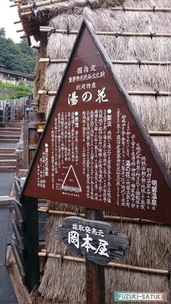 f:id:fuzuki-satuki:20200601235058j:plain