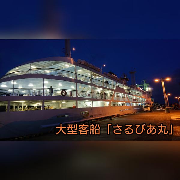 f:id:fuzuki-satuki:20200602170512j:plain