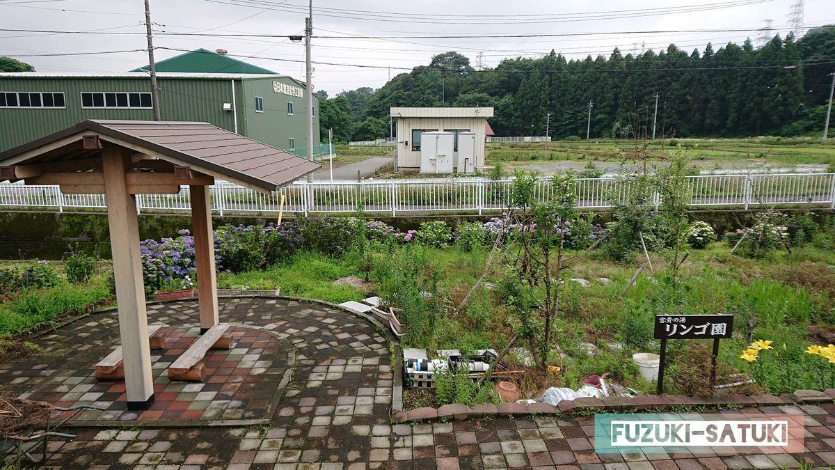 f:id:fuzuki-satuki:20200630000213j:plain
