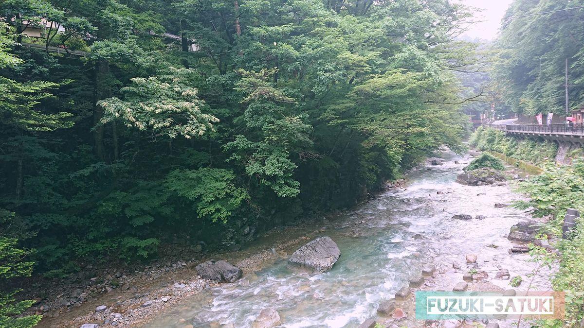 四万温泉の青く自然豊かな清流 の写真