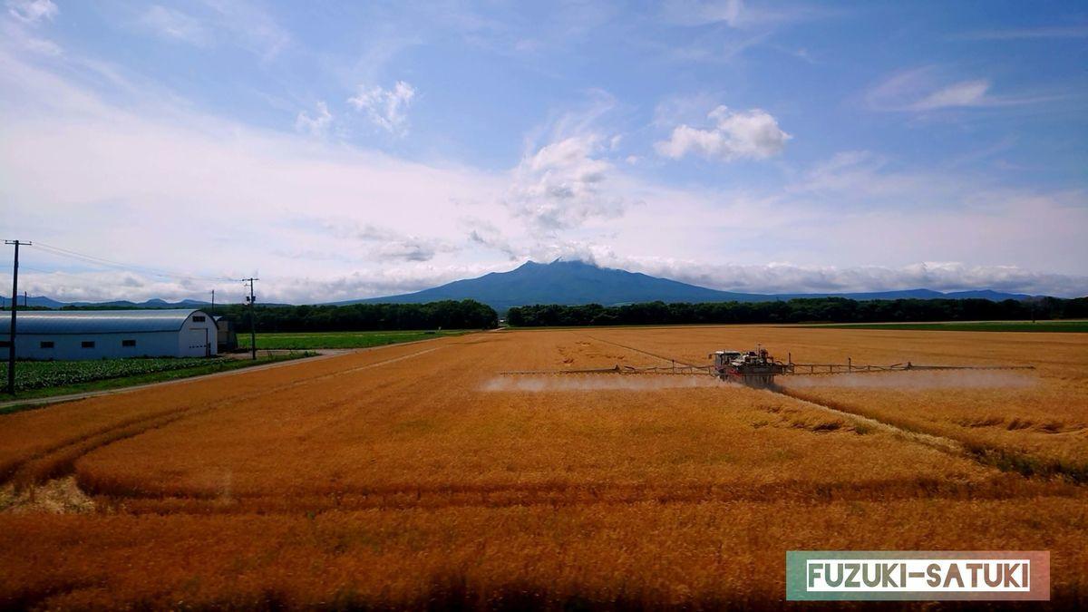 北海道 札幌から知床へ向かう途中の麦畑 農薬散布中