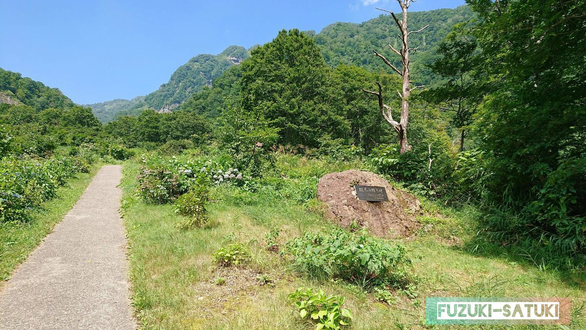 右手にある岩に『開湯百周年碑』と書かれている
