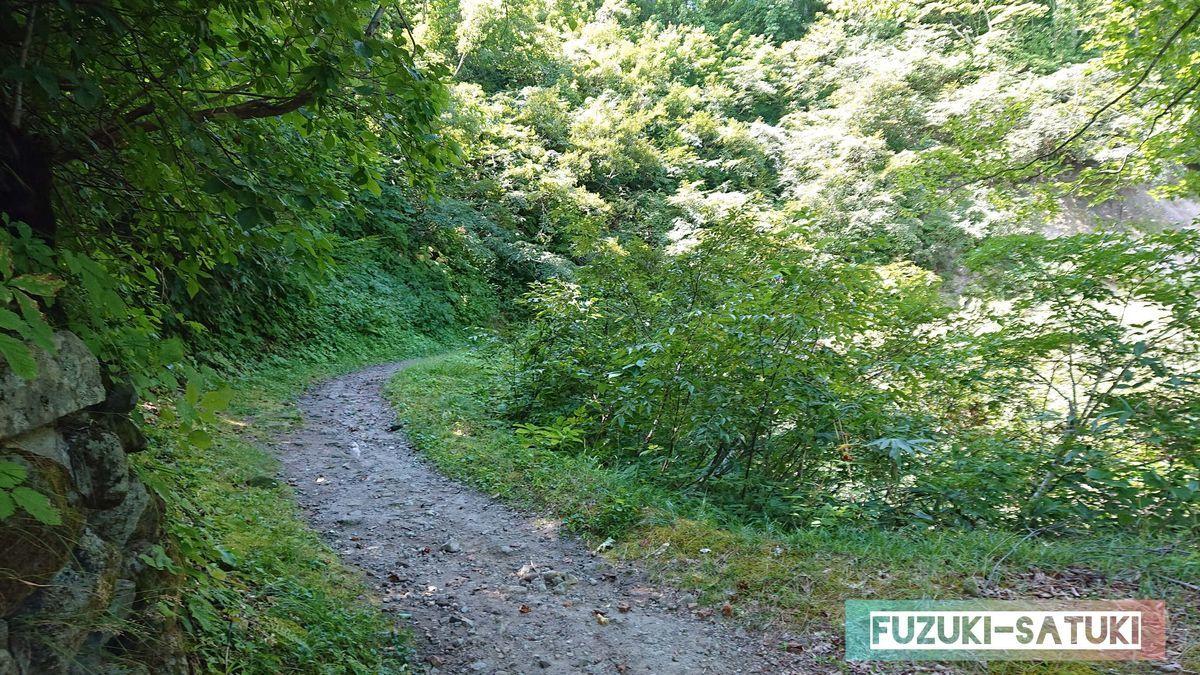 河原の湯方面の山道 緩やかなカーブになっている