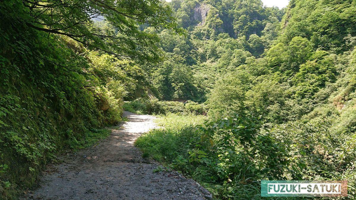 河原の湯方面の山道 夏の緑もまた綺麗に見える
