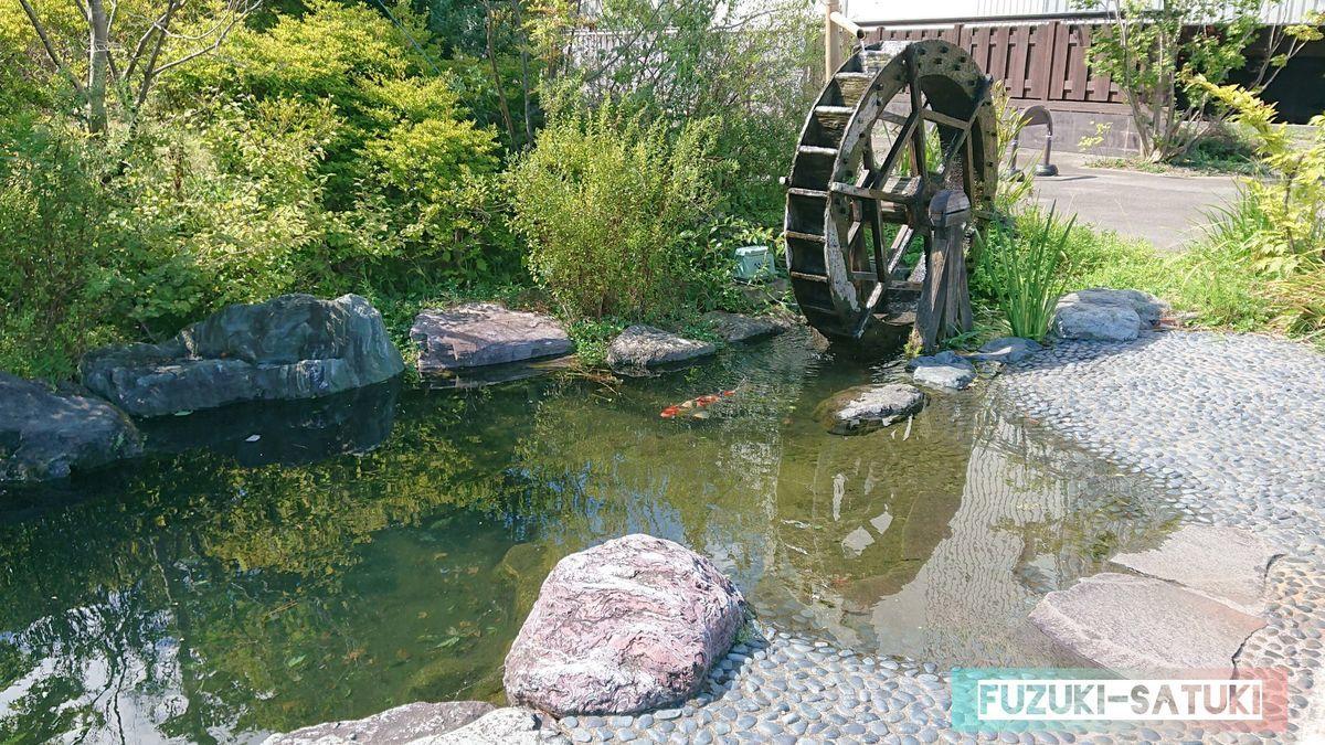 月岡の温泉街にある、水車と池、そして池の鯉。当たり前のようにそこに佇んでいる。
