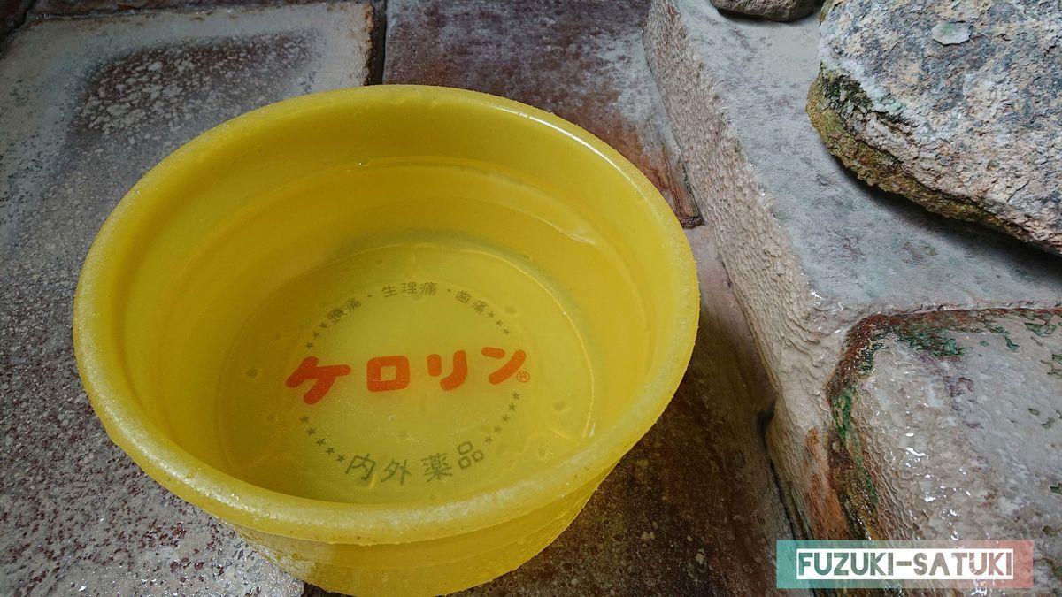 桜湯 桶に汲むと、とても透き通ったお湯に見える