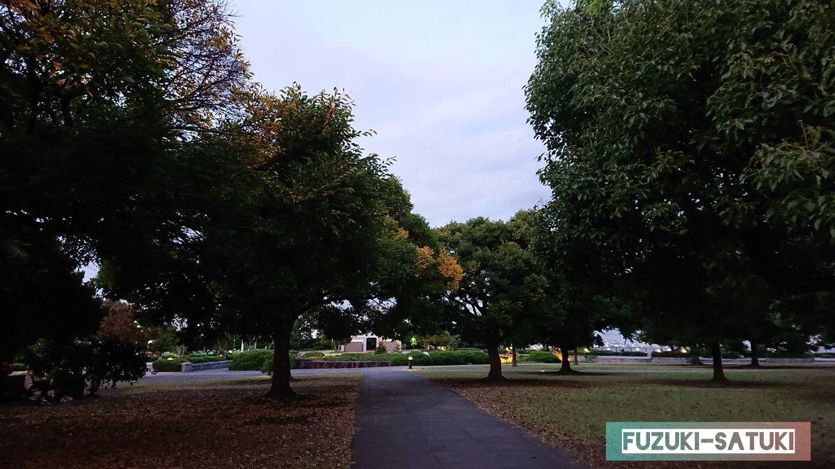赤レンガ倉庫敷地内の公園 紅葉にはまだ早い青さが残る木々