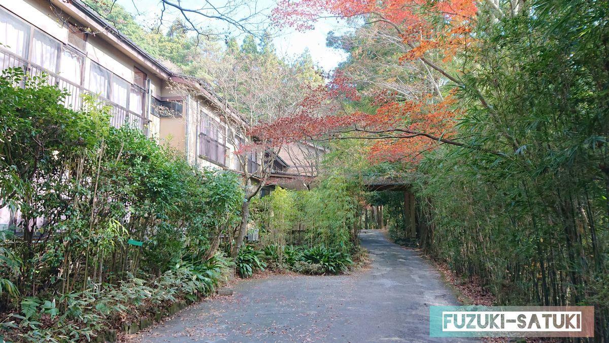 紅葉と湯之谷山荘の鄙びた雰囲気 敷地内から撮影