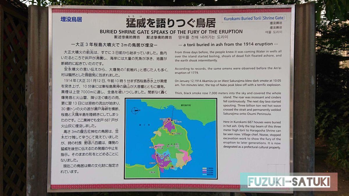 鹿児島県桜島にある、埋没鳥居の説明書きのひとつ。「猛威を語りつぐ鳥居」には、大正3年桜島大噴火で3mの鳥居が埋没したと、その理由と共に載せられている。