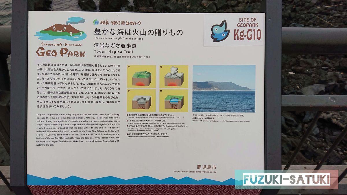 豊かな海は火山の贈りもの、と題した説明板。錦江湾ではイルカが数百頭住んでいて、運が良ければ出会えるかもしれませんと書かれている。また、錦江湾の造られた歴史と経緯が火山と深い関係があると詳細が書かれている。