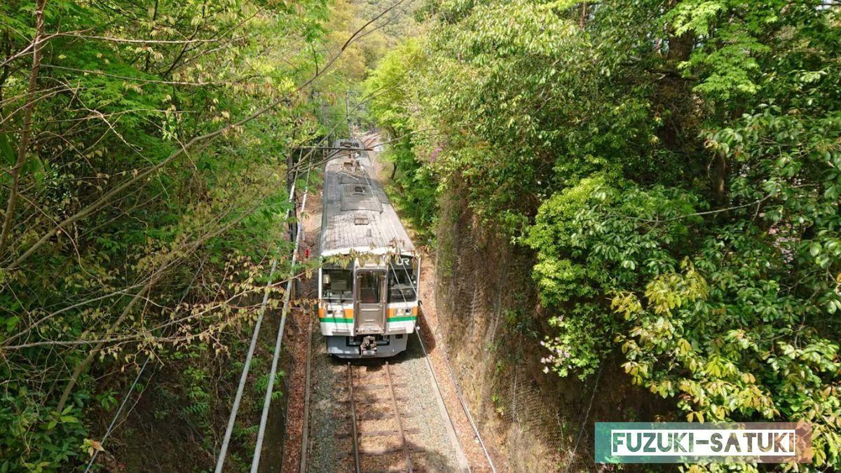 湯谷温泉を走る鉄道。橋の上から手を振ると「ファン」と警笛を鳴らしてくれる神対応。