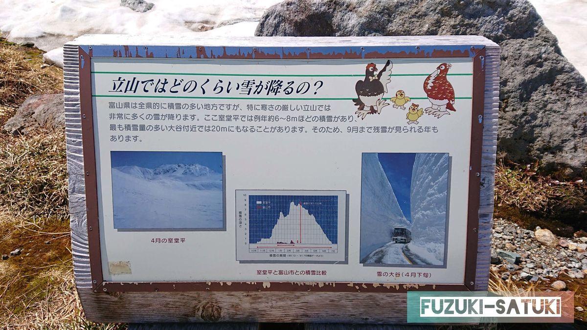立山ではどのくらい雪が降るの?という看板。室堂平では毎年約6~8m程の積雪があり、大谷付近では20mにもなることがある。そのため9月まで積雪が残ることもあるとのこと。