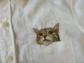 ネコ刺繍1