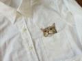 ネコ刺繍2