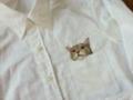 ネコ刺繍2s