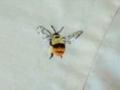 ハチ刺繍2s