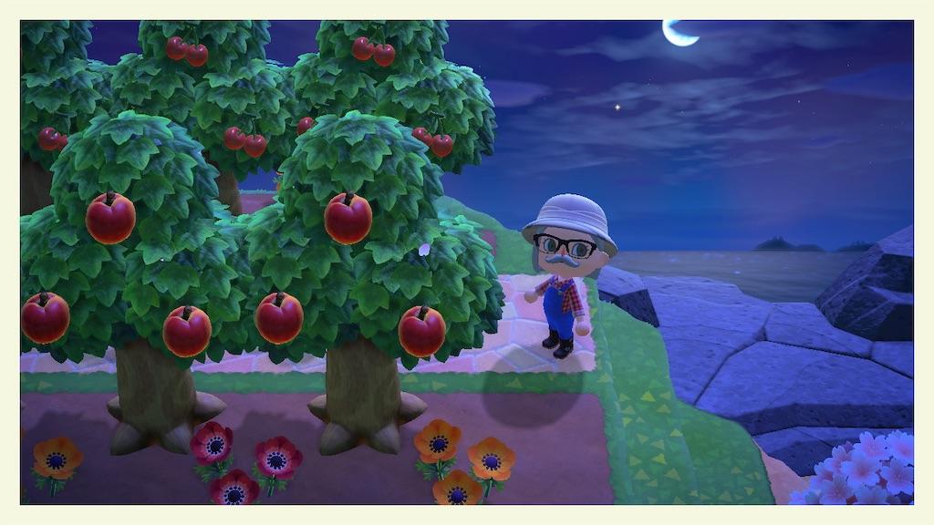 果樹 どうぶつ の 園 森