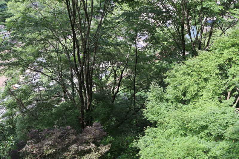 f:id:g-onsen:20200726160933j:plain