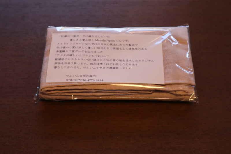 f:id:g-onsen:20210128183332j:plain