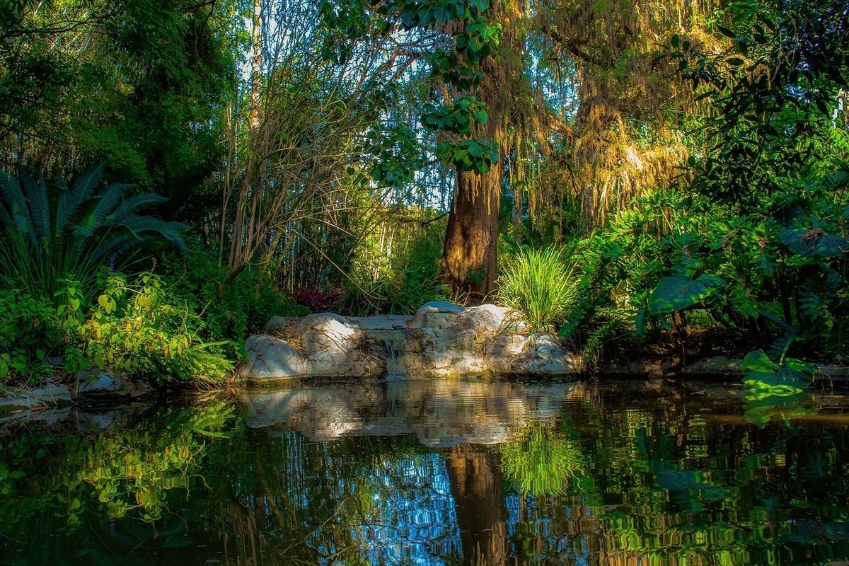 豊かな自然。森、川。